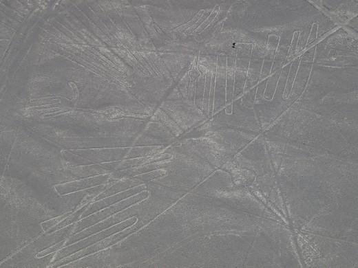 Nazca - Nazca Lines - Condor