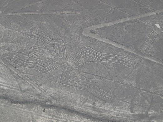 Nazca - Nazca Lines - spider