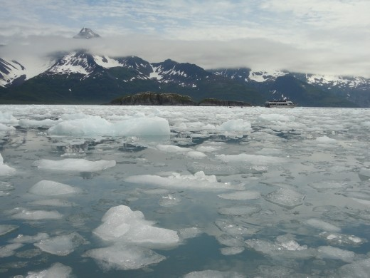 Kayak Day - Aialik Glacier - pack ice