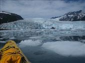 Kayak Day - Aialik Glacier - pack ice: by dannygoesdiving, Views[233]