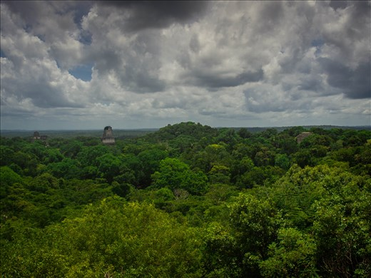Tikal - views from the top of Temple 4