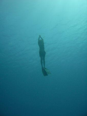 Jo freediving