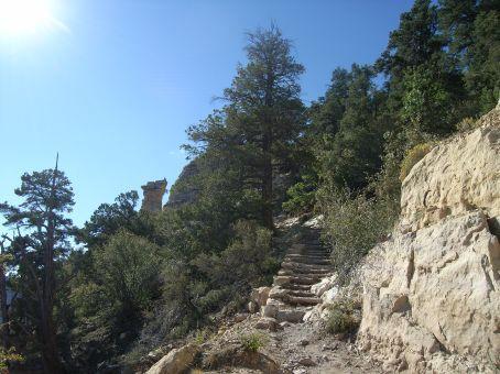 The same trail
