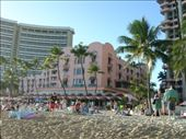 The 'famous' Pink Hotel on Waikiki Beach: by dannygoesdiving, Views[815]
