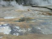 Yellowstone - Geyser Hill - pump geyser: by dannygoesdiving, Views[226]