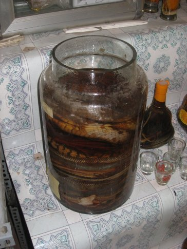 We tried some of this snake wine. It had a bit of a strange after taste.