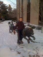 Bronze wolves, outside the nature/science museum: by davidsgibson, Views[196]