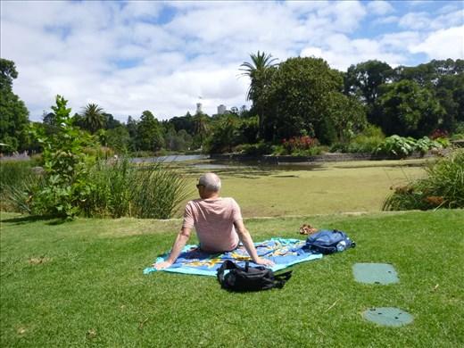 picnic lunch at botanic garden