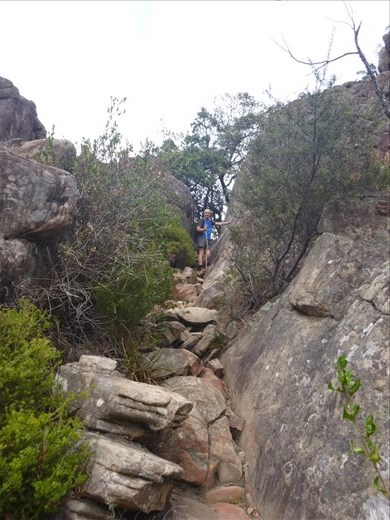 The final ascent to Boronia Peaks