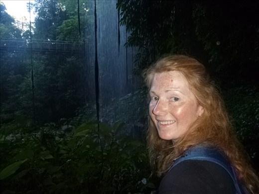 behind the waterfall Dorrigo