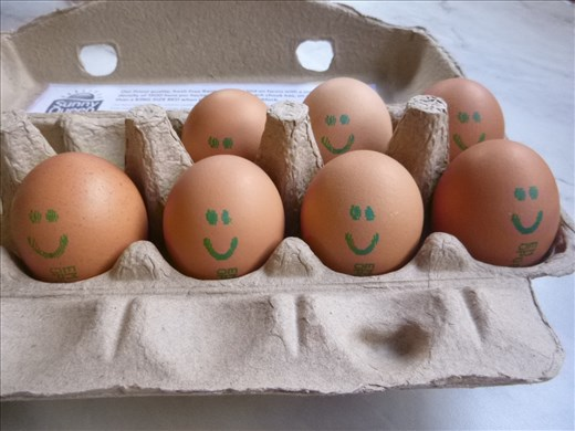 ahh, cute eggs with faces for breakfast