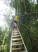 canopy walkway: by dawnandmark, Views[180]