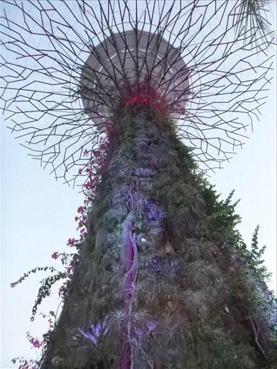 supergrove tree up close