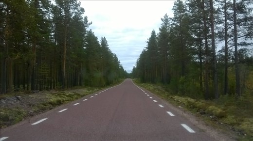 Typical road through Dalarna region, 100kms long!