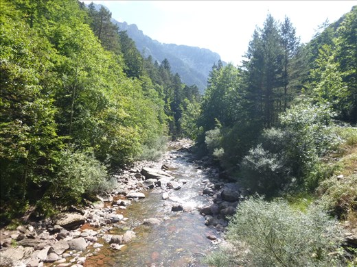 lovely river