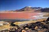 Laguna Colorada: by deborre, Views[180]