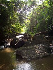 the river on our trek (Looks beautiful but the stones hurt our feet!): by deena_and_gary, Views[291]