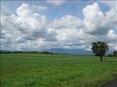 by dennispeper, Views[80]