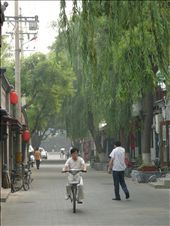 Restored hutong alleys. Men and women in their pijamas, ciclying to work.: by dentedileone, Views[424]