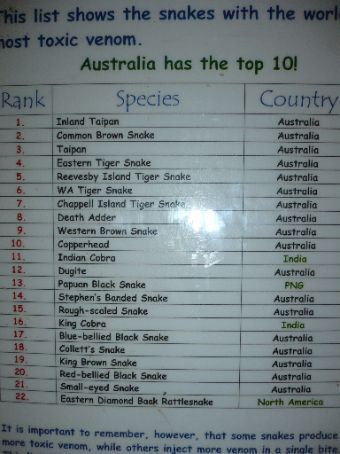 A list of the deadliest snakes in the world...the top 10 ...