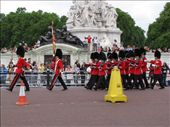 Buckingham Palace Changing of the Guard: by dianasaurus, Views[721]