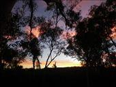 night sky: by dianne_peter, Views[111]