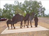 Afgan Camel Driver Wyndham: by dianne_peter, Views[103]