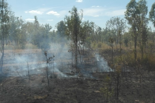 controlled burn off
