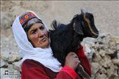 Wakhi/Pamirian Shepherdess : by didar, Views[213]