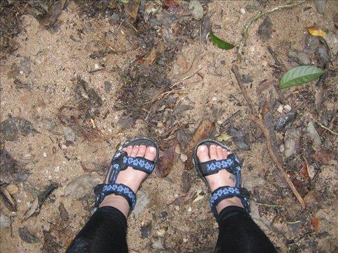 Sexy sandals but sooo comfy