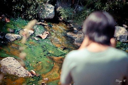 A river & a student