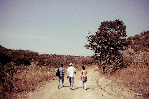 3 teachers & nature