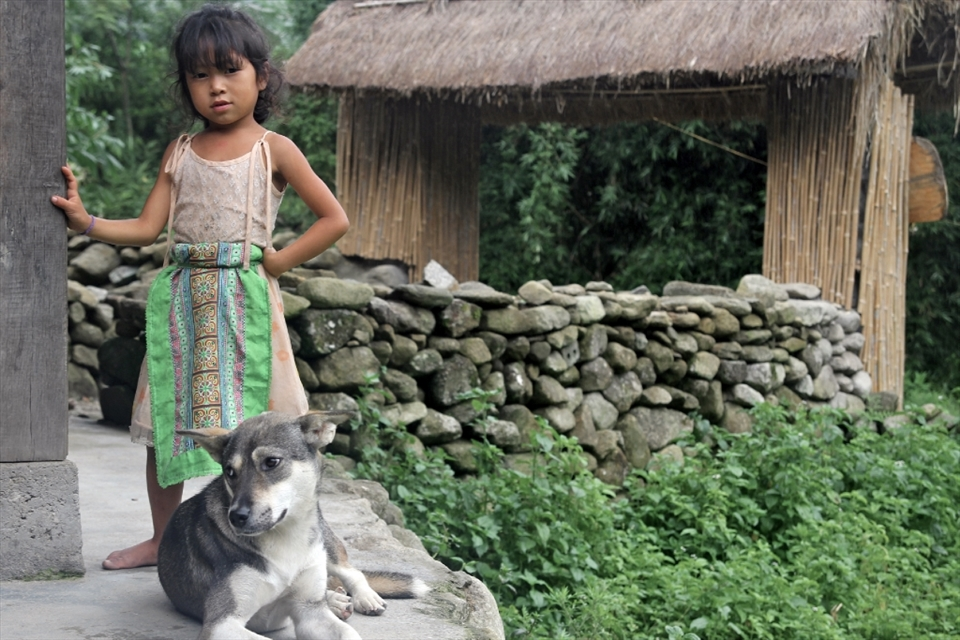 A young Black H'mong girl waits patiently with one of her three dogs while her parents prepare the evening meal.