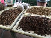 Insects at the Market: by dinagosse, Views[216]