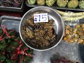 Roaches for sale at the Market: by dinagosse, Views[214]