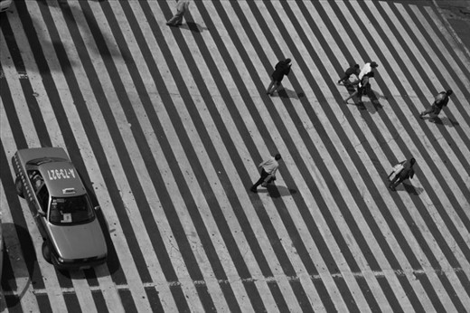 A bird's eye view of the zebra crossing that leads to the main town square in Mexico City. Locals and tourists, alike, dodge taxis like a dangerous game of cat and mouse