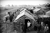 A group of women stand outside one of the tents in the camp. Out of the 600 families, less than one fourth have returned. Vacillating between debris and dreams of what used to be, they battle everyday, rebuilding bamboo by bamboo, towards a bricked structure. They hope for not much, but a house they can live in.: by divvea, Views[7412]
