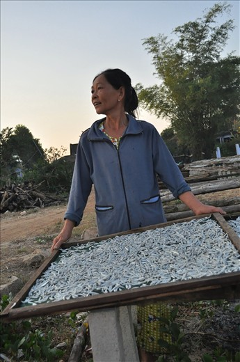 A lady lays out some fish to dry while calling out to a mate on the beach.