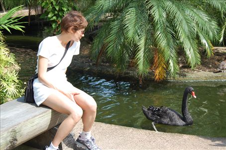 Every now and then there is a black swan