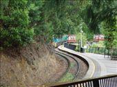 Train runnng through the park in Kuranga: by djswanson, Views[317]