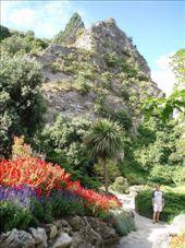 Garden in Nappier, NZ: by djswanson, Views[189]