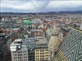 by dohnster, Views[469]