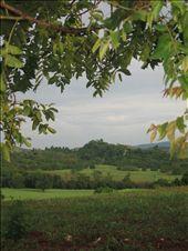 by dojie, Views[106]