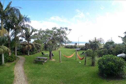 Ahipara, bottom of 90miles beach. Hostel garden