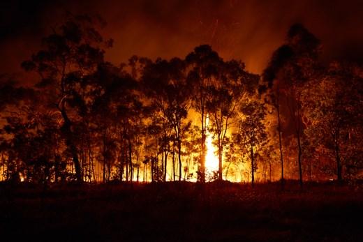 A bushfire at night in Northern Territory