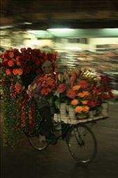 Flower hawker on bicycle.: by dondealban, Views[280]