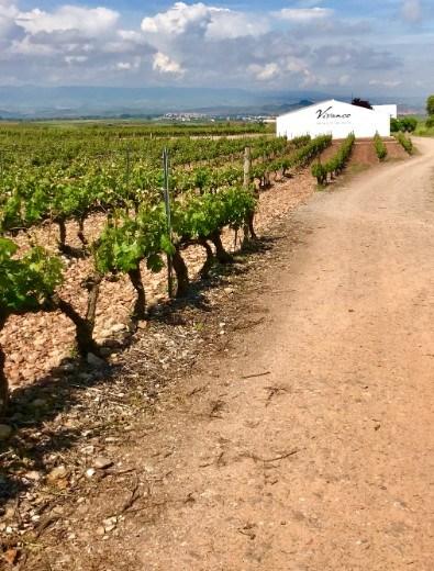Vivanco winery