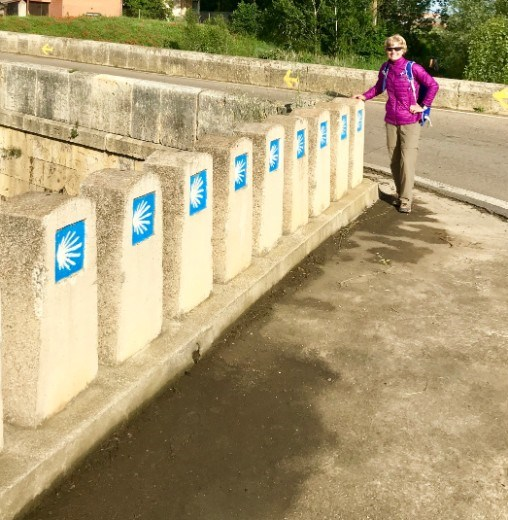 row of Camino signs DMS