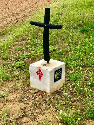 Templar cross in field