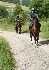 mounted police outsideTriacastela: by donna_jeff, Views[66]